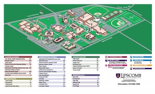 lips b university